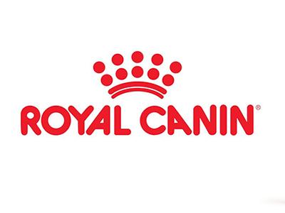 NIRVANA REAL ESTATE asesora en el alquiler de una oficina de 1230 metros a Royal Canin